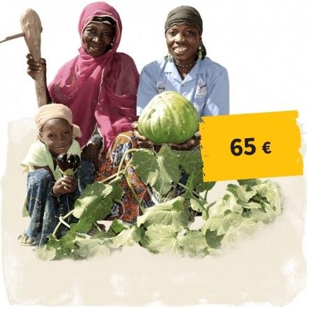 Link zum Spendenshop: zwei Frauen und ein Kind stehen hinter einer Kürbispflanze, Button 65 Euro