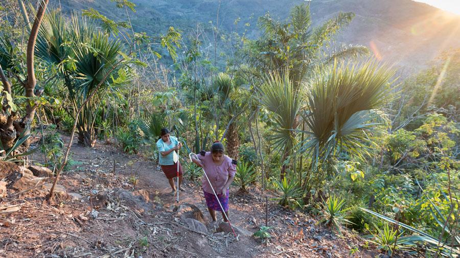 Zwei blinde Frauen laufen einen Berghang hinunter. Eine hat einen Langstock.