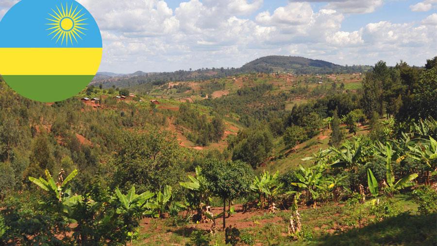 Landesimpression von Ruanda